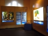 cologne-chocolate-museum-46.jpg