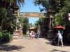 animal-kingdom-asia-01.jpg