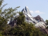 animal-kingdom-everest-101.jpg