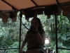 magic-kingdom-jungle-cruise-05.jpg