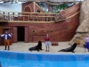 seaworld-clyde-and-seamore-22.jpg