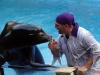 seaworld-clyde-and-seamore-24.jpg