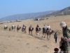 The Group on Camels